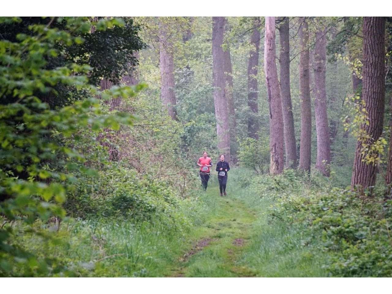 Groen Woud Lente Trail 100