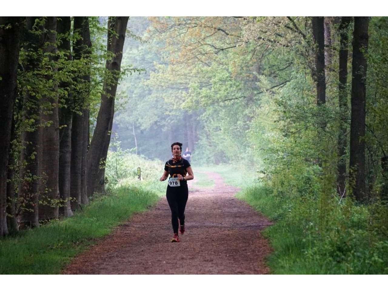 Groene Woud Lente Trail 104