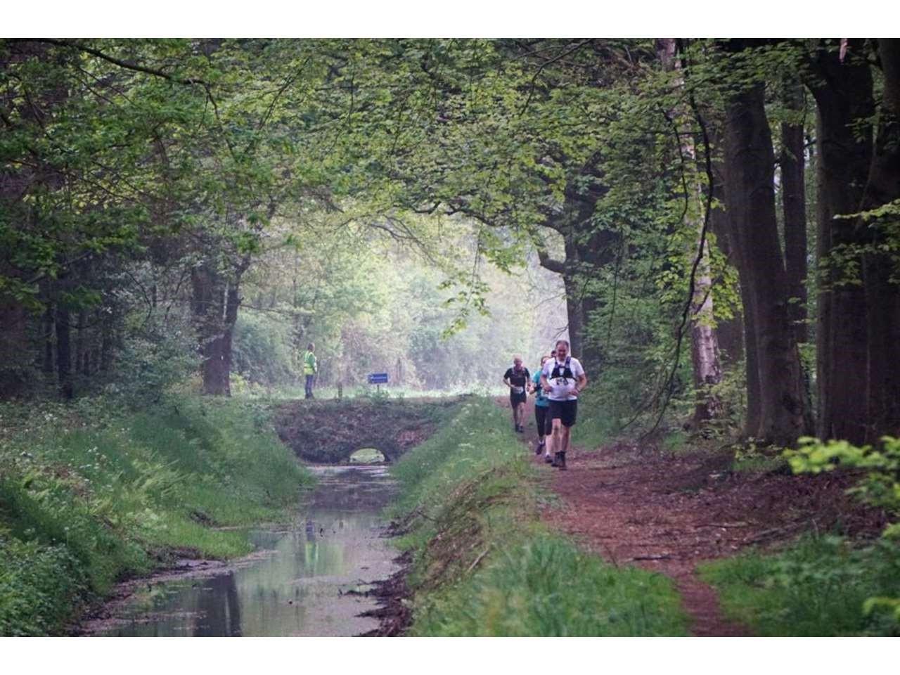 Groene Woud Lente Trail 106