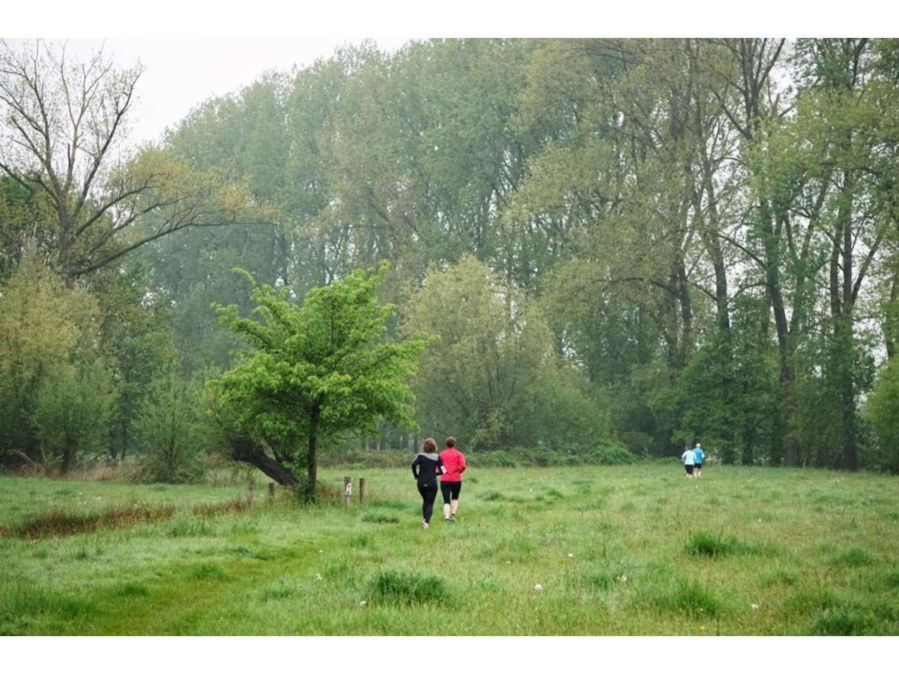 Groene Woud Lente Trail 108