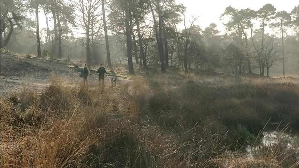 Groene Woud Lente Trail 2019 3